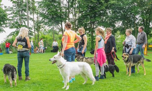 2016 Tag des Hundes Galerie54
