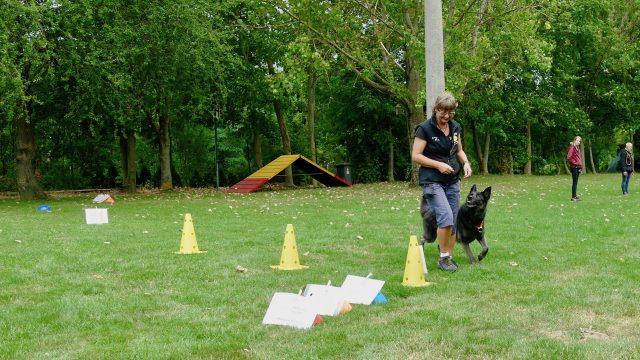 Rallye Obedience 2021