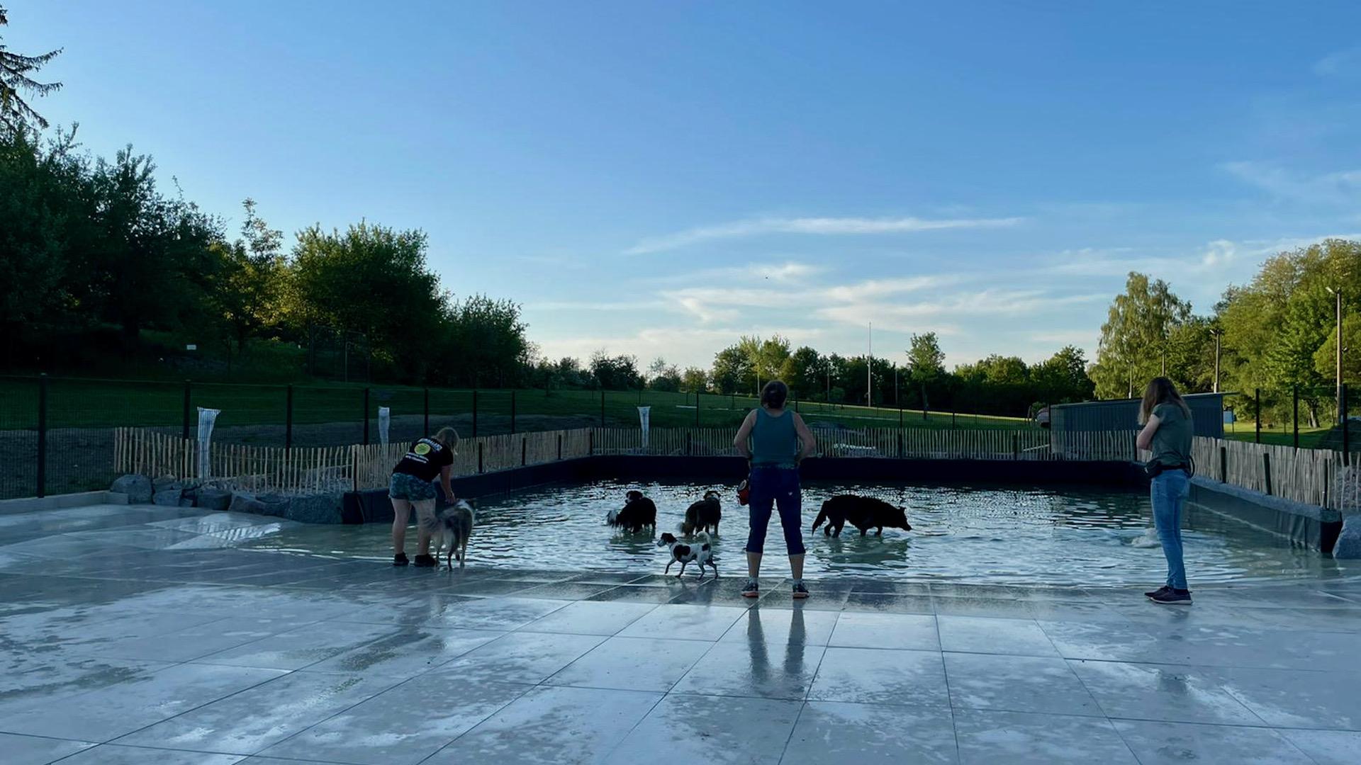 Der Hundeschwimmteich auf Kimbaland, Nutzungsordnung ab dem 03. Juli 2021